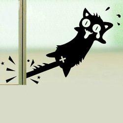 Pórul járt macska, ablakmatrica
