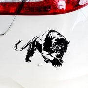 Fekete párduc, autómatrica
