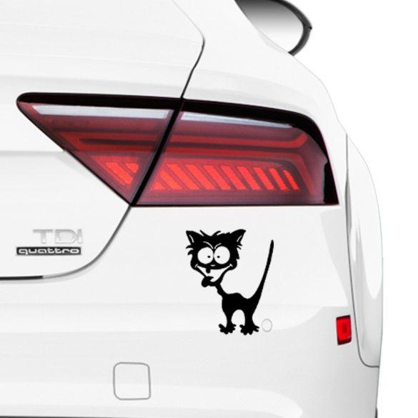 Crazy cat, autómatrica