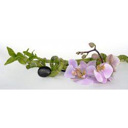 Orchidea dekortapéta konyhába a Dekormatricák Falmatrica Webáruháztól