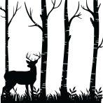 Szarvas a fák között