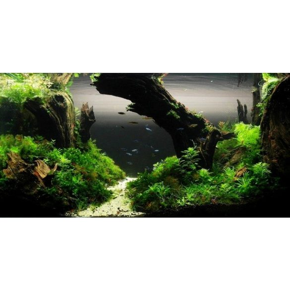 Búvóhely, akvárium matrica