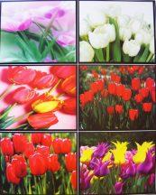 Tulipánok, csempematrica