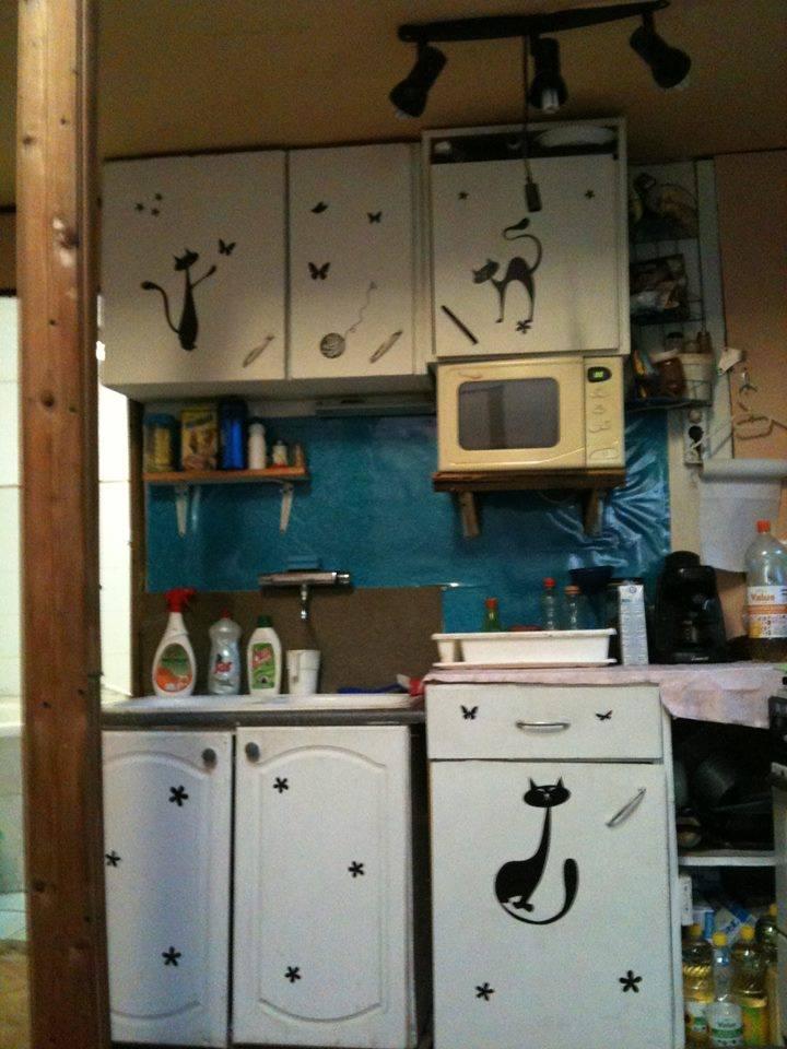Szilvi a konyhát dekorálta cicás matricánkkal