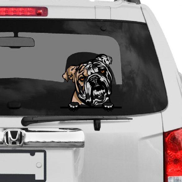 Angol Bulldog rajzos autómatrica a Dekormatricák webáruház matricái közül