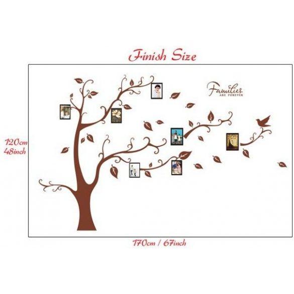 Barna családfa