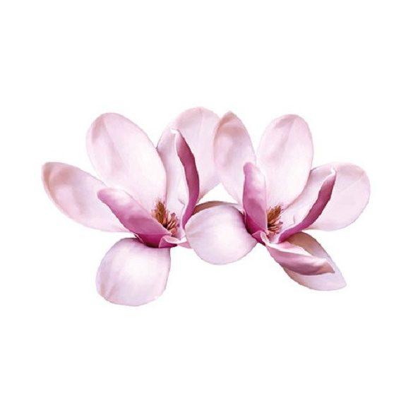 Magnólia virágok
