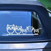 Bagolycsalád, autómatrica a Dekormatricák webáruház matricái közül