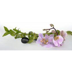 Orchidea matrica konyhába a Dekormatricák Falmatrica Webáruháztól