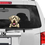 Labrador rajzos autómatrica a Dekormatricák webáruház matricái közül