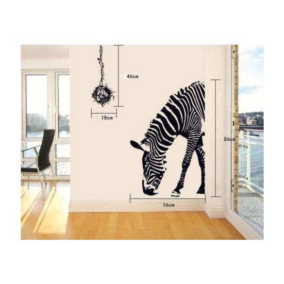 Zebra, ajtómatrica
