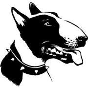 Bull terrier autómatrica a Dekormatricák webáruház matricái közül