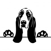 Basset Hound autómatrica a Dekormatricák webáruház matricái közül