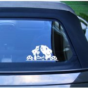 Berni pásztor autómatrica a Dekormatricák webáruház matricái közül
