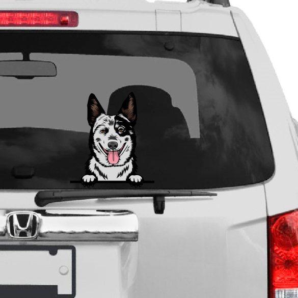 Ausztrál Pásztorkutya rajzos autómatrica a Dekormatricák webáruház matricái közül