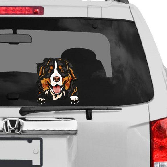 Berni Pásztorkutya rajzos autómatrica a Dekormatricák webáruház matricái közül