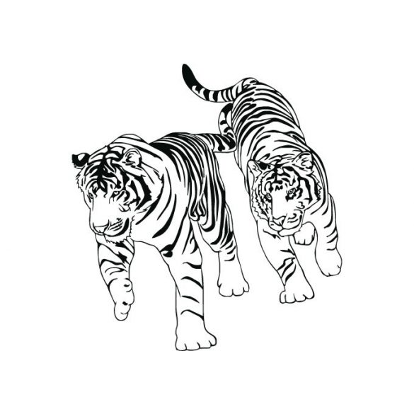 Sétáló tigrisek, falmatrica a Dekormatricák falmatrica webáruháztól