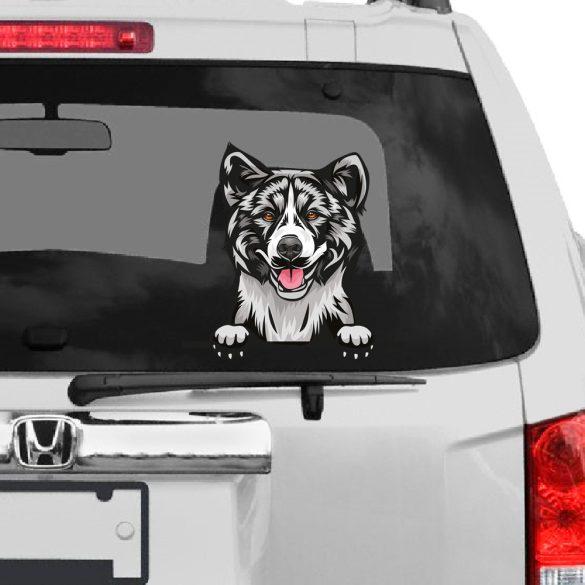 Amerikai Akita rajzos autómatrica a Dekormatricák webáruház matricái közül