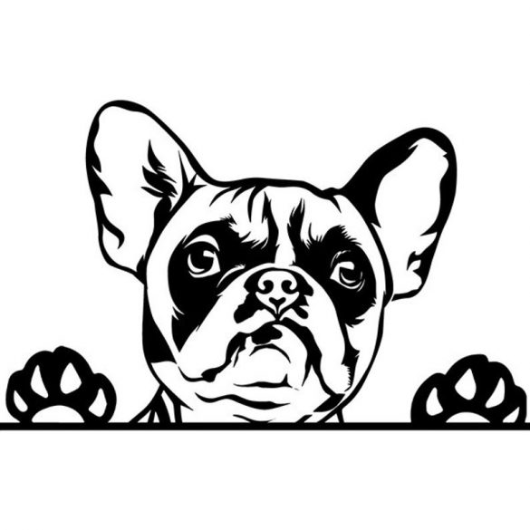 Francia bulldog 1 autómatrica a Dekormatricák webáruház matricái közül