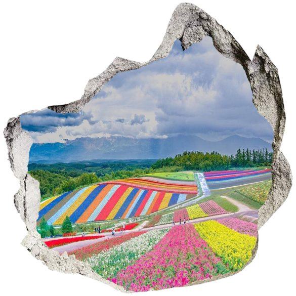 Virágos mező a kitört falon át, falmatrica a Dekormatricák Webáruházból