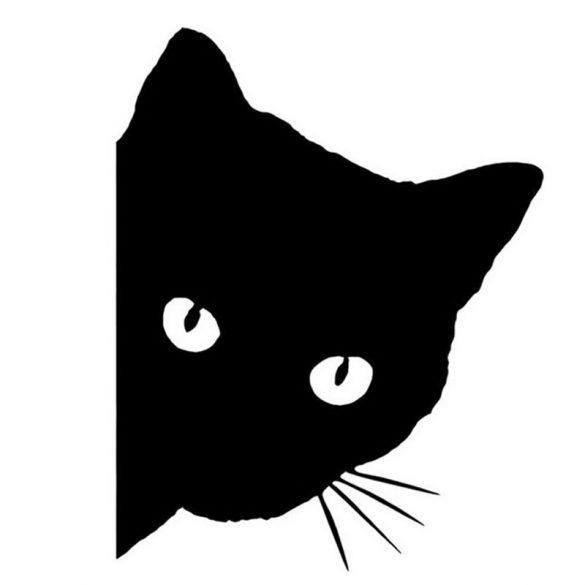 Cica, laptopmatrica