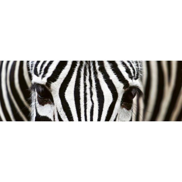 Zebrák, konyhai matrica hátfal, 180 cm