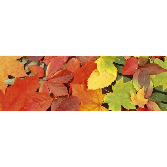 Őszi levelek, konyhai matrica hátfal, 180 cm