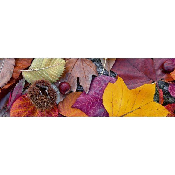Őszi levelek és termések, konyhai matrica hátfal, 180 cm