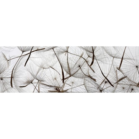 Fehér pitypang, konyhai matrica hátfal, 180 cm