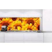 Napraforgó virágok, konyhai matrica hátfal, 180 cm