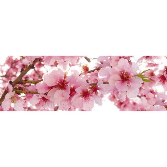 Cseresznyevirágok, konyhai matrica hátfal, 180 cm