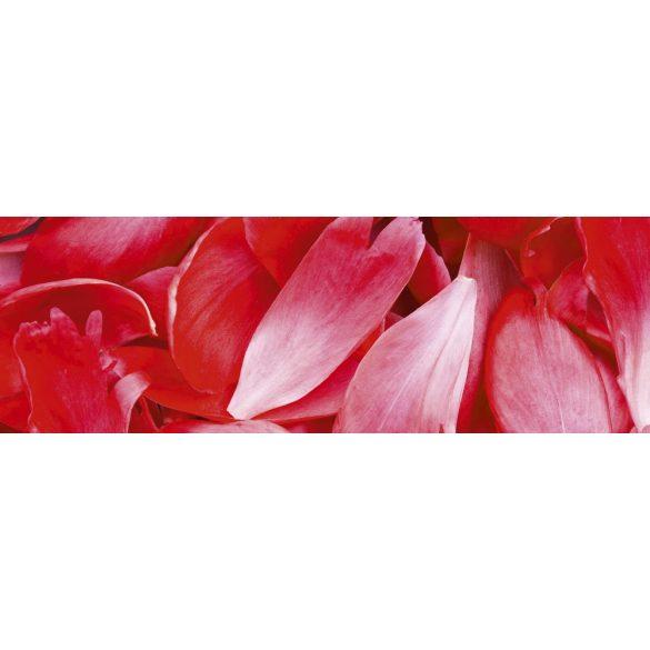 Virágszirmok, konyhai matrica hátfal, 180 cm