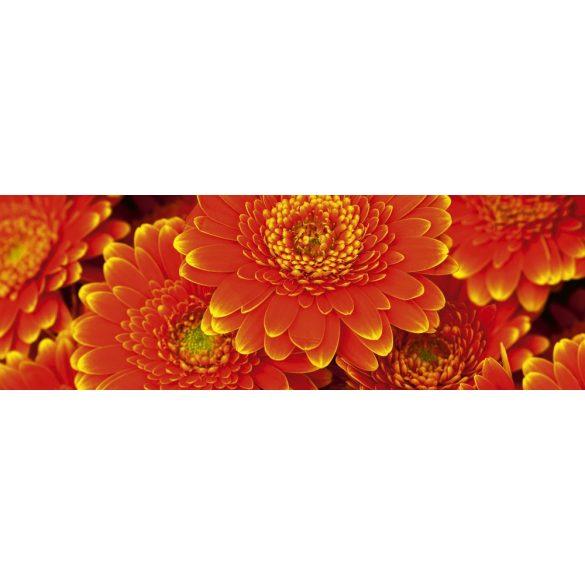 Piros virágok, konyhai matrica hátfal, 180 cm
