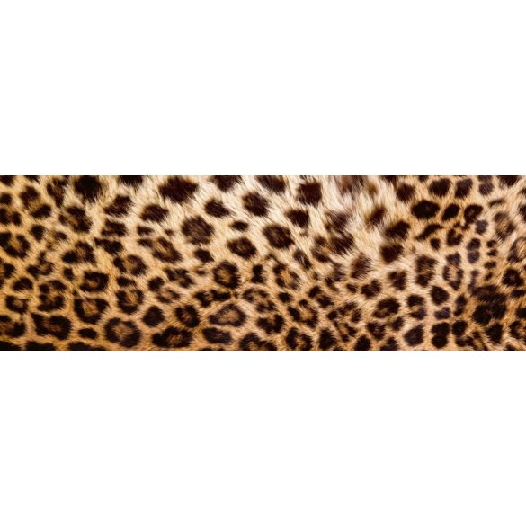 Leopárd, konyhai matrica hátfal, 180 cm