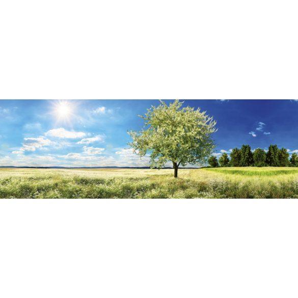 Napfényes tavaszi rét, konyhai matrica hátfal, 180 cm