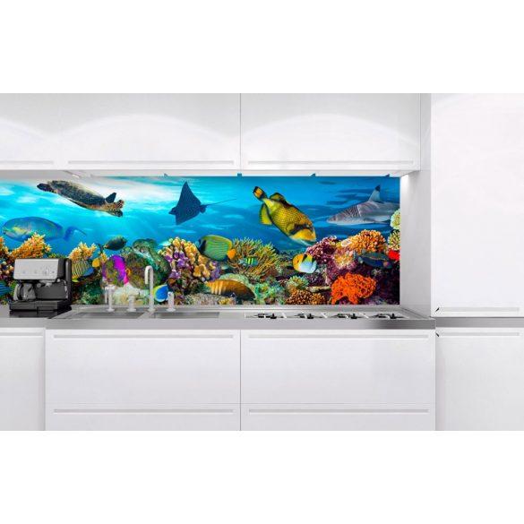 Trópusi akvárium, konyhai matrica hátfal, 180 cm