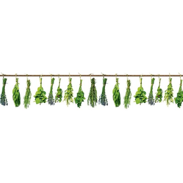 Fűszernövények, konyhai matrica hátfal, 260 cm