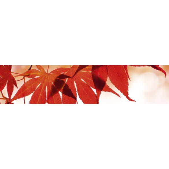Piros levelek, konyhai matrica hátfal, 260 cm