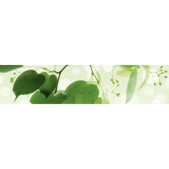 Zöld levelek, konyhai matrica hátfal, 260 cm