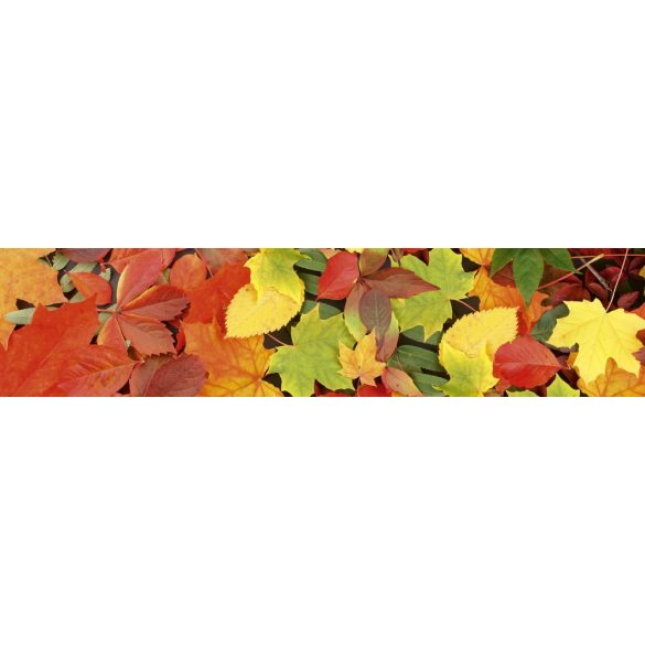 Őszi levelek, konyhai matrica hátfal, 260 cm