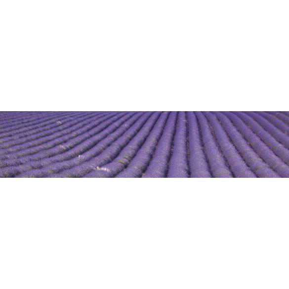 Levendulamező, konyhai matrica hátfal, 260 cm