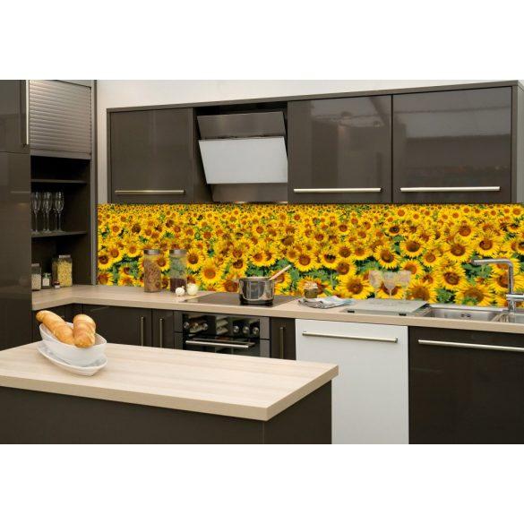 Napraforgómező, konyhai matrica hátfal, 260 cm