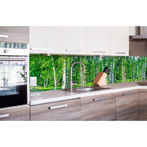 Nyírfaerdő, konyhai matrica hátfal, 260 cm