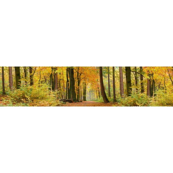 Őszi erdő, konyhai matrica hátfal, 260 cm