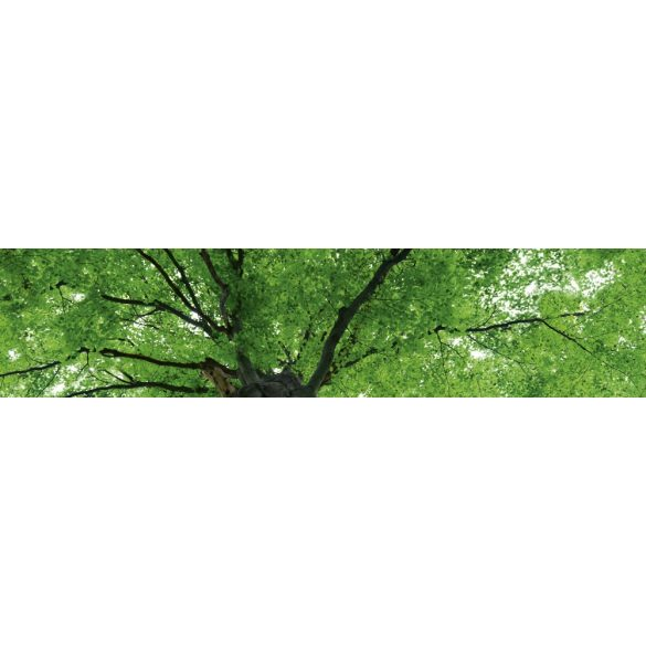 Lombkorona, konyhai matrica hátfal, 260 cm