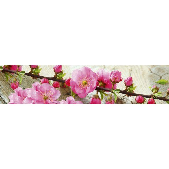 Virágzó cseresznyefaág, konyhai matrica hátfal, 260 cm