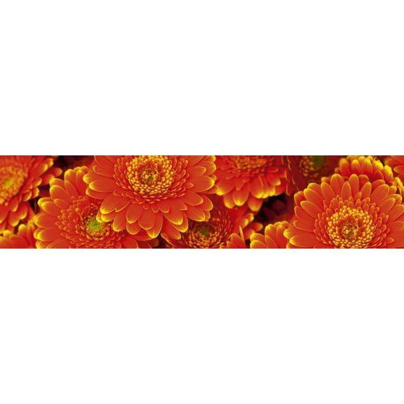 Piros virágok, konyhai matrica hátfal, 260 cm