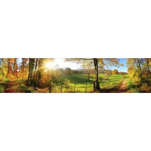 Napfényes erdei út, konyhai matrica hátfal, 260 cm