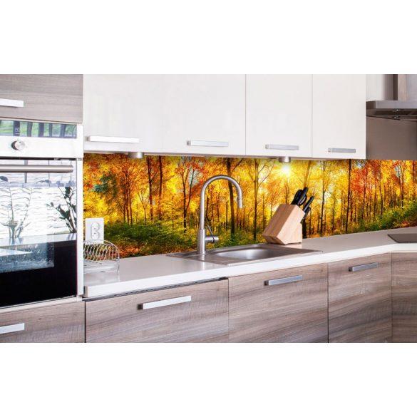 Fényes őszi erdő, konyhai matrica hátfal, 260 cm
