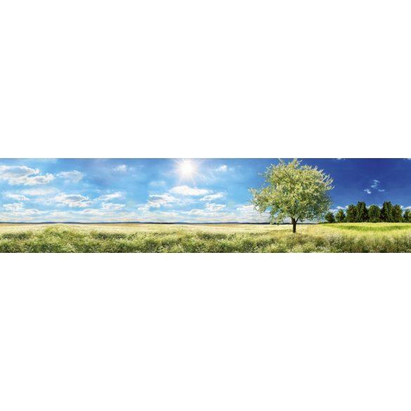 Napfényes tavaszi rét, konyhai matrica hátfal, 260 cm
